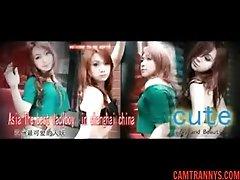 Chinese Ladyboy Salina, Free Shemale Porn 35: - camtrannys.com